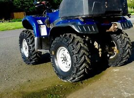 2010 yamaha grizzly