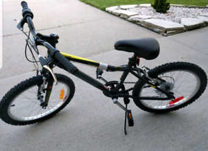 brand new Infinity  exceed crazyhorse HT20 mountain kids bike