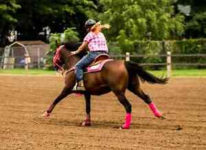 Offering western riding lessons ares 6 and up.