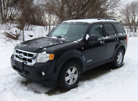2008 Ford Escape SUV 4WD w/Hitch