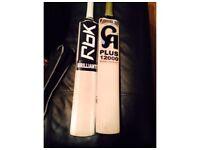 CA 12000 Plus & Reebok Cricket Bats