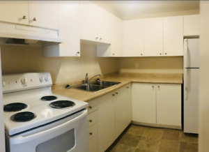 Start off 2019 RIGHT in this Spacious & Convenient Welland 1 br