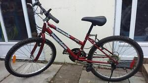 Mountain Bikes For Sale, Raleigh - Made in Canada, 20-Inch Frame, 18-Speed, 26-inch tires,