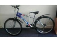Raleigh manta ray bicycle