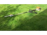 Stihl long reach chainsaw/hedge trimmer 🌲 🍃