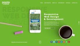 Website Development for Businesses - Sites that bring in Revenue !