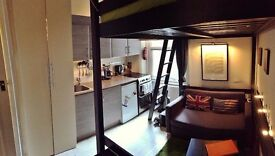 Christmas / New Year, Double Studio, Short Term Let - Central London (19 December - 7 January 2017)