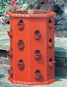 Vaso per fragole fioriere piantatore vasi terrazza balcone for Fragole in vaso
