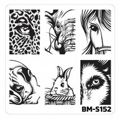 Bundle Monster Stamping Schablone Plate BM-S152 Nailart Tier Auge Animal Eyes