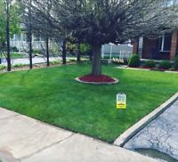 Sod Installation & fence installation