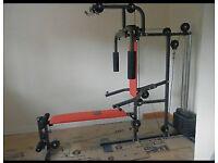 Pro Power Home Multi Gym