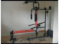 Pro Fitness Home Multi Gym