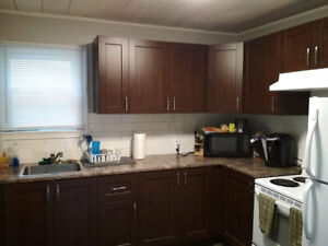 Updated 2 bed in great downtown neighbourhood, all inclusive!