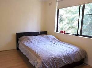 Newly Renovated 2 Bedroom + Study - Only 500m from the station! Turramurra Ku-ring-gai Area Preview