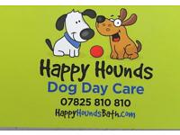 Happy Hounds Bath Dog Day Care