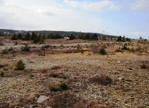 Alma Heights - Spaniards Bay, NL - MLS# 186550 St. John's Newfoundland image 9