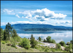 NEW LAKEVIEW SUBDIVISION SALMON ARM