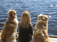 In home pet care while you work/holiday