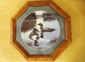 """Birds of Distinction"" Loon Plate in solid oak frame"
