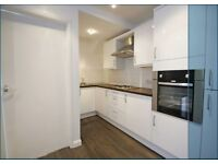 Large split level flat newly painted, new carpets & kitchen on lovely Devonshire Road Forest Hill