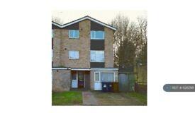 6 bedroom house in Comet Road, Hatfield, AL10 (6 bed) (#1126298)