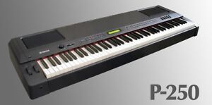 Piano for sale - Electric Yamaha P250 Professional