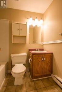 FOR RENT in Prime Location! St. John's Newfoundland image 8