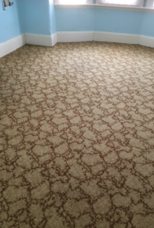 Carpet ( approx 20 sq metres)