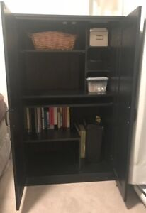 Free storage or computer cabinet.