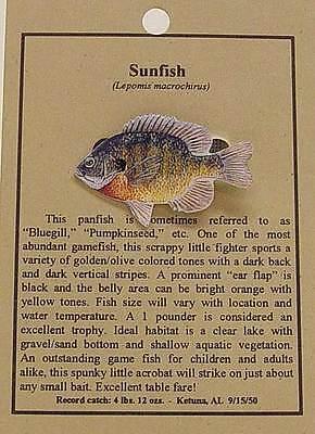 SUNFISH FISH HAT PIN LAPEL PINS