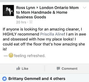 Professional housekeeper! London Ontario image 5