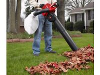 leaf blower wanted