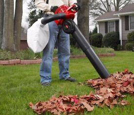 leaf vacuum blower wanted