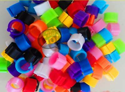 10 Colors 100 Bird Leg Bands 8mm Pigeon Chicken Parrot Bantam Poultry Rings New
