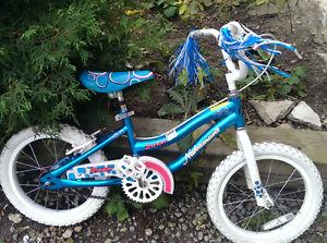Girl's 14 inch Nakamura  Bike