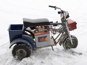 Tricycle électrique de Youppi