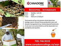 Beekeeping Intermediate, Canadore College, Parry Sound