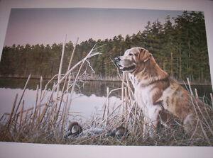 "Tammy Laye unframed art print ""Old Dan"""