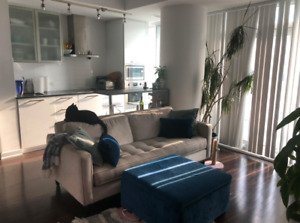 Room for Rent in Ice Condos OCT 1, 2019