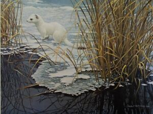 ROBERT BATEMAN - ERMINE ON EDGE - PROFESSIONALLY FRAMED