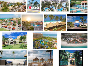 Aruba Vacation Home Rentals couple, family or large groups