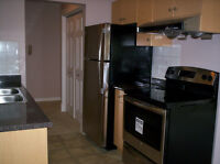 MAYFAIR  APARTMENTS-FULL RENOVATION (Richmond) 2br - 900ft²