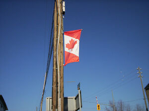 Canadian and other flags Kitchener / Waterloo Kitchener Area image 1