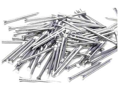 "13mm Panel Pins 30g of 1/2"" Panel Pins / Nails For DIY / Arrrox 220 Nails"