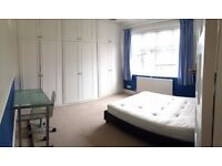 Amazing House!!!Amazing Room!!!Ava. Now!!