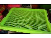Toilet puppy dog house training pad holder tray