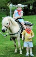 PONY RIDES- -We bring them to you (204) 663-1000