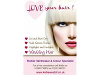 Mobile Hairdresser in Bournnemouth and Poole. Vidal Sassoon and Wella trained.