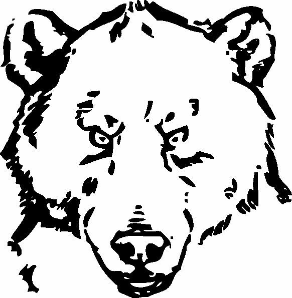 Bear Electronics and Communications