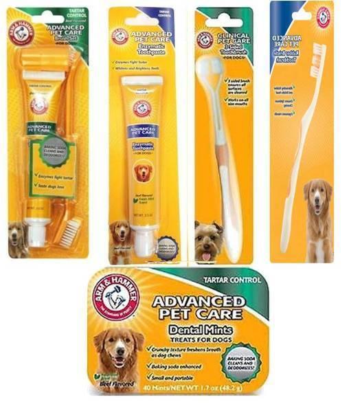 arm & Hammer CANE AVANZATA Dentale Cura Spazzolino da denti, dentifricio, zecche